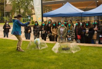 La UC Temuco fue anfitriona del Festival de las Ciencias y Saberes de La Araucanía
