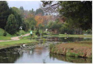 UCT suscribe Acuerdo de Producción Limpia