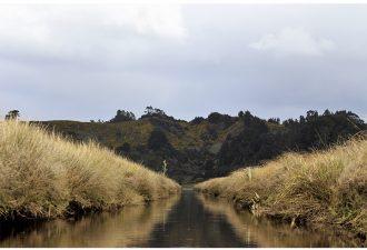 Universidad Católica de Temuco apoya documental sobre humedal de Monkul